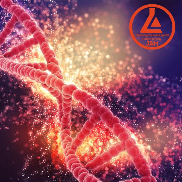 انواع تستهای تشخیصی ژنتیکی بعد از انجام تست های اولیه غربالگری چیست